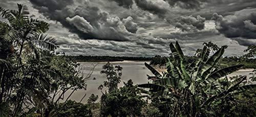 Xuyen rung Amazon anh 6