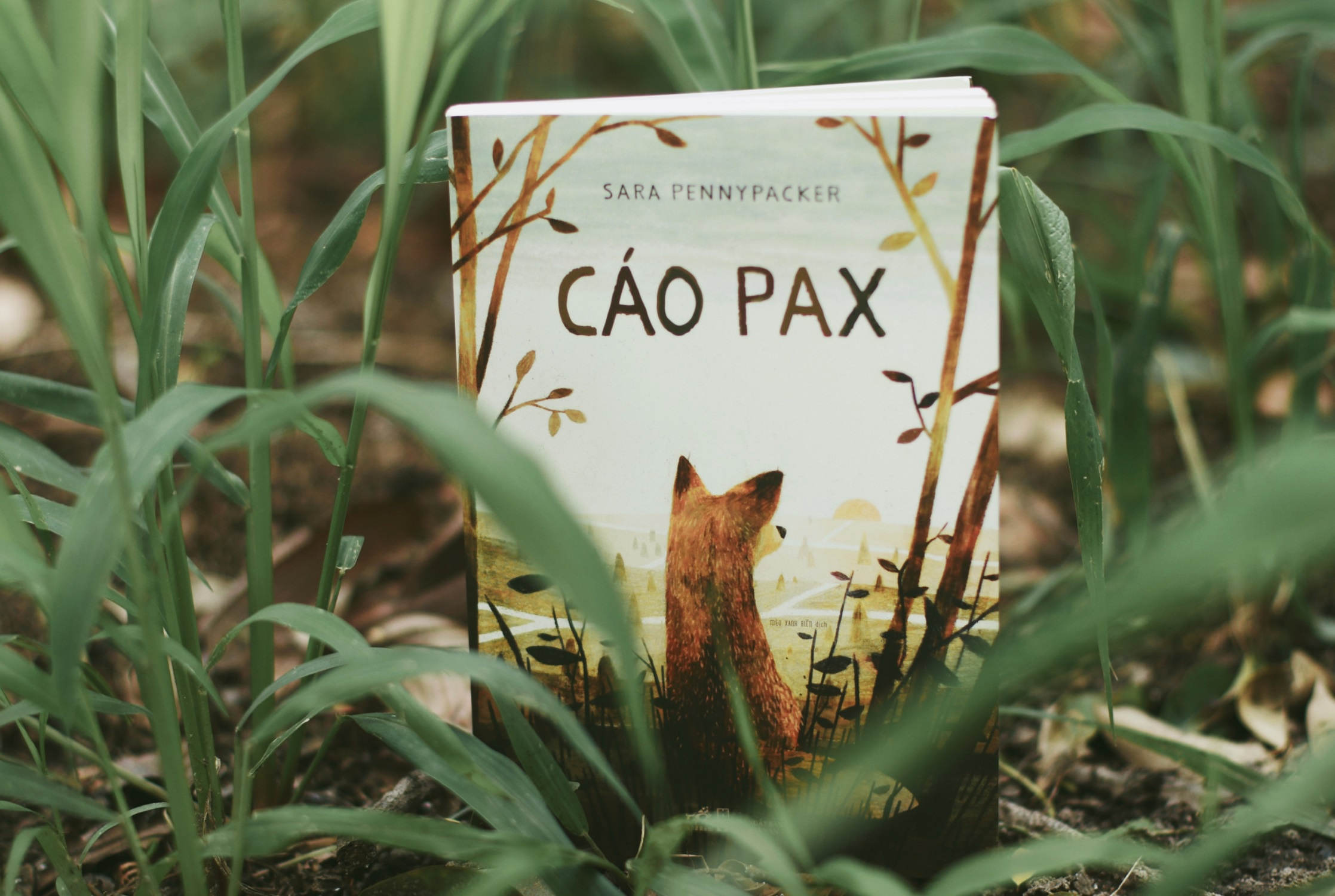 Review sach Cao Pax anh 1